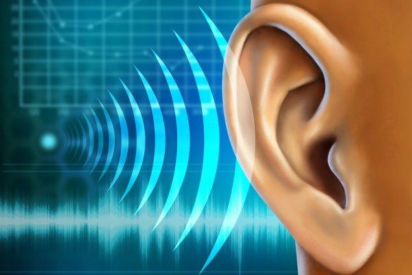 Средство для улучшения слуха Calminax Калминакс
