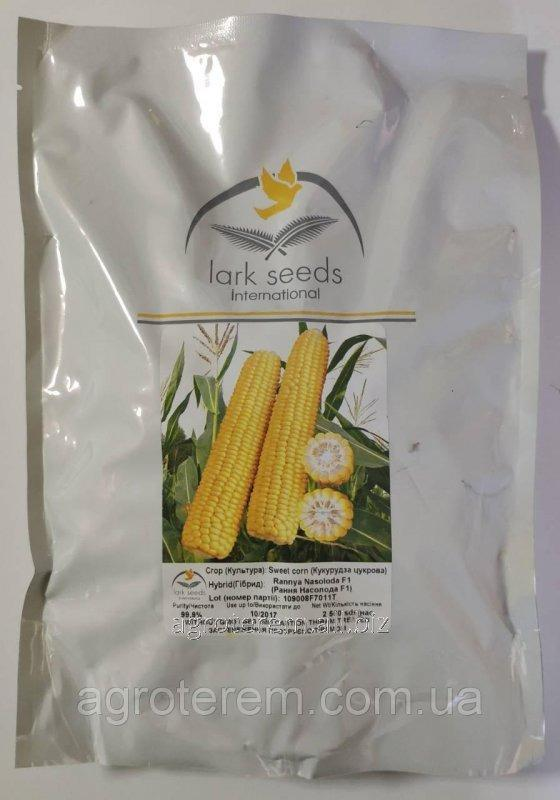 Купить Кукуруза Рання Насолода 2500с