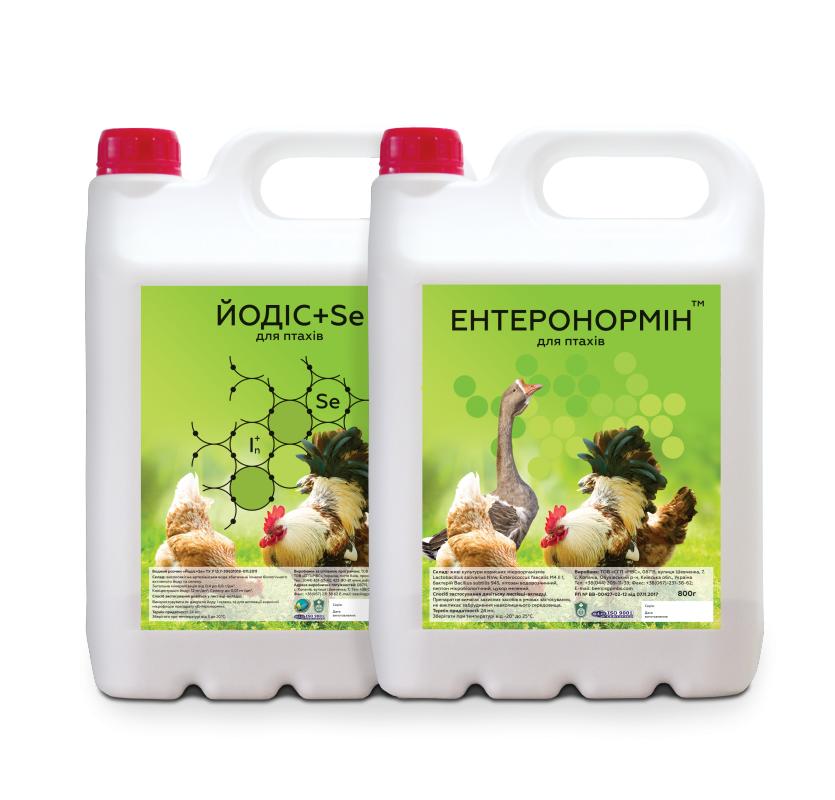 Купить Синбиотик Энтеронормин в птицеводстве 800г+4000мл