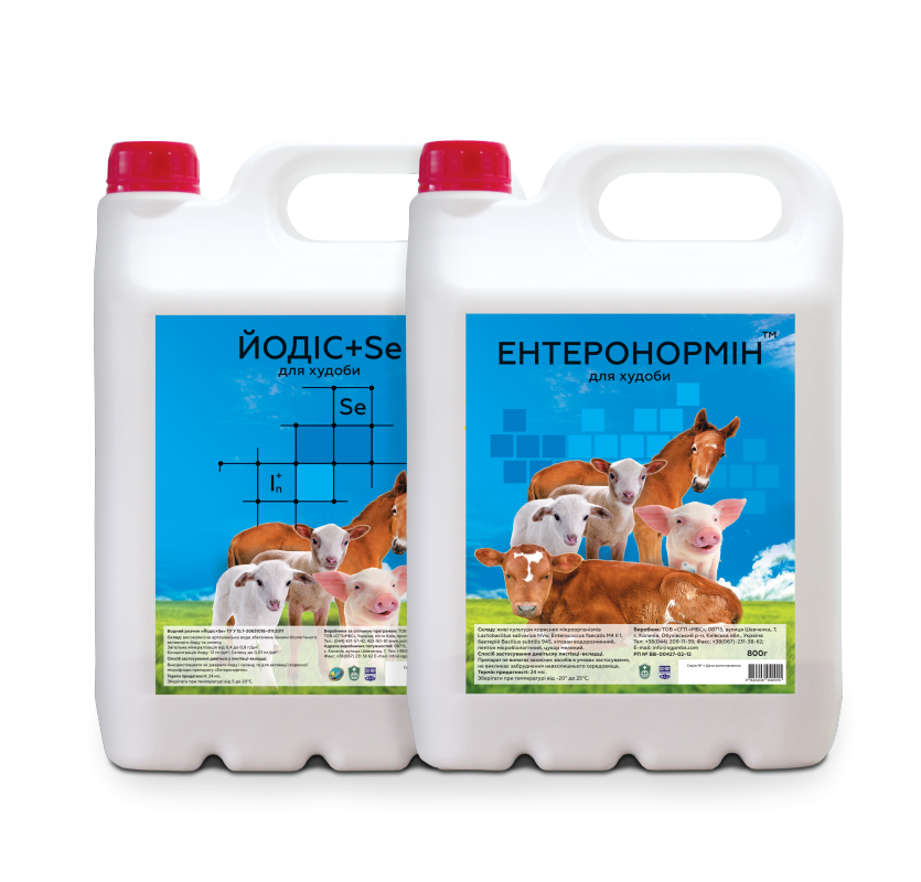 Купить Синбиотик Ентеронормин экологический препарат в свиноводстве 800г+4000мл