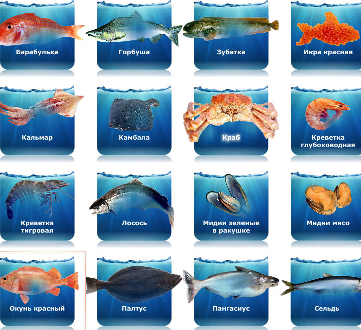 фото лосось рыба