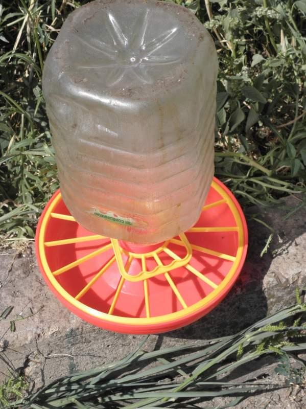 Поилка для уток своими руками из пластиковой бутылки