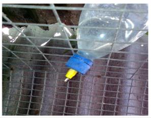 Купить Ниппельная автопоилка для кролей с нержавеющим или пластиковым ниппелем