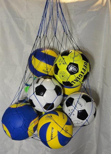 """Купить Сетка для переноски мячей """"ЭКОНОМ"""" на 10 шт., шнур Д - 2,5 мм, бело-синяя"""