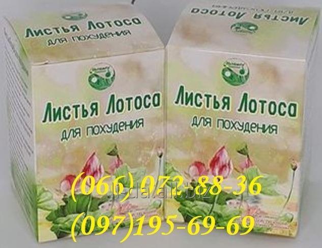 Листья Лотоса для Похудения 40 капсул 900 грн.