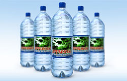 Купить Вода минеральная лечебно-столовая, воды минеральные, Украина