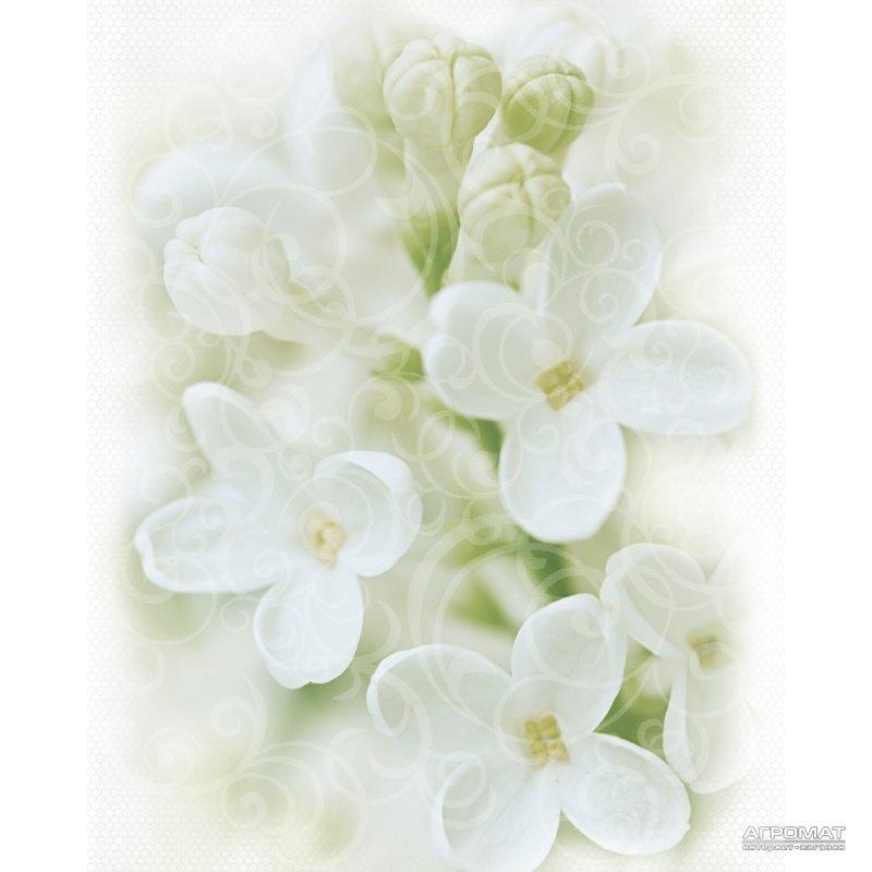 Плитка Cersanit Andrea DEC FLOWER