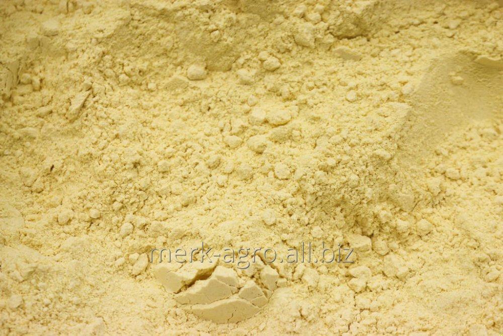 Buy Corn flour