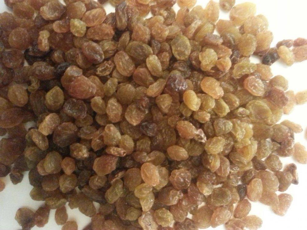 Buy Light brown seedless raisins. Export from Iran