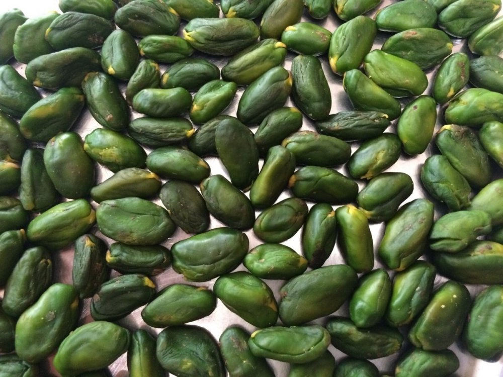 Buy Green peeled pistachio kernels. Delivery from Iran