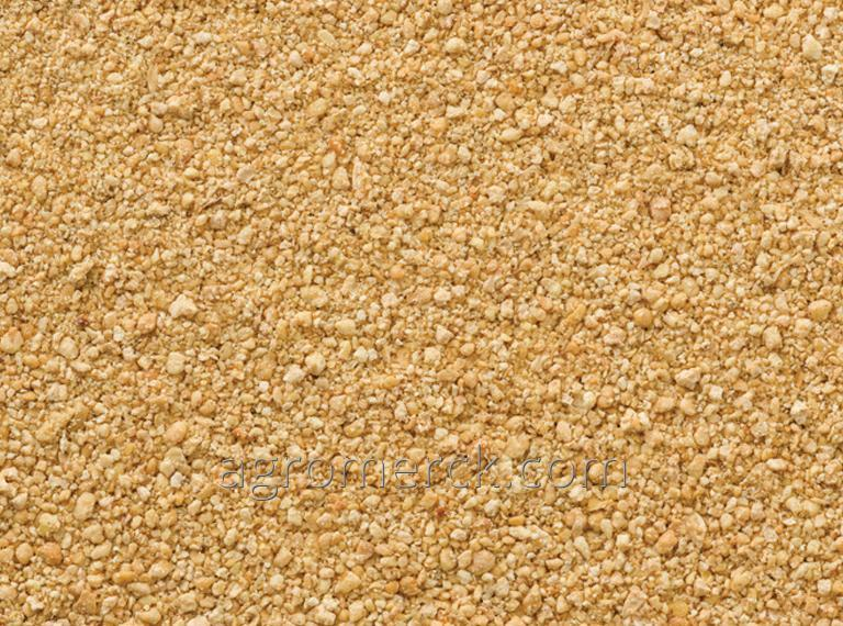 Buy Soybean meal, 48% protein, from 500 tons in bulk or in bags of PP 50 Kg.