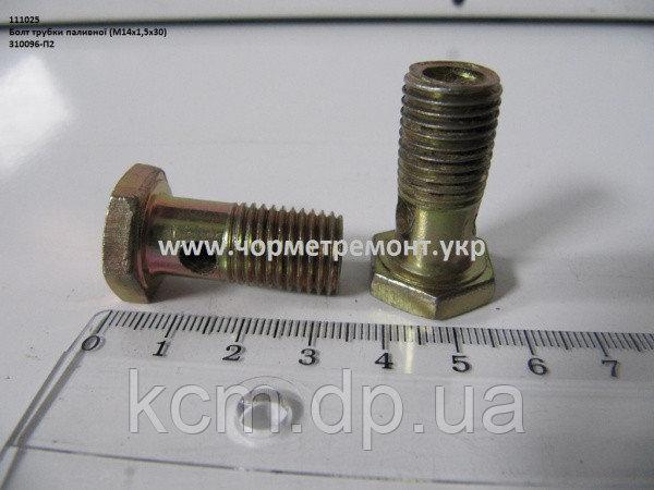 Болт трубки паливної (М14*1,5*30) 310096-П2 , арт. 310096-П2