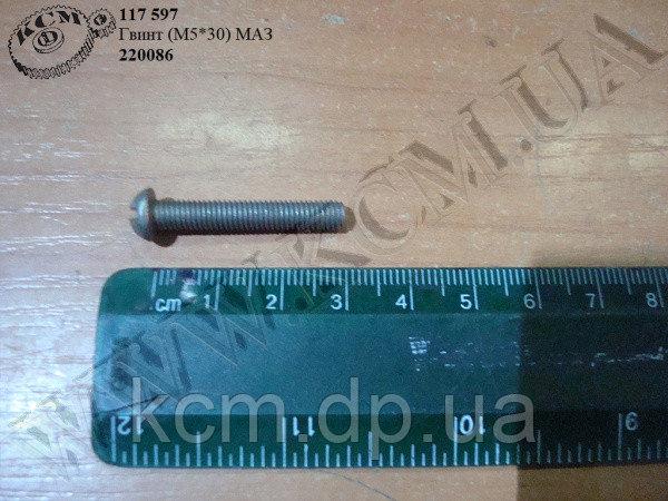 Гвинт 220086 (М5*30) МАЗ, арт. 220086