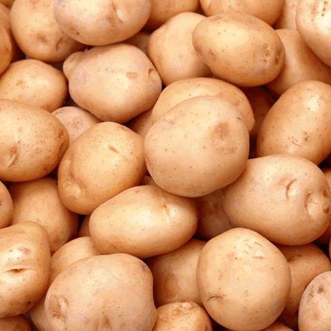 Buy Potato starch