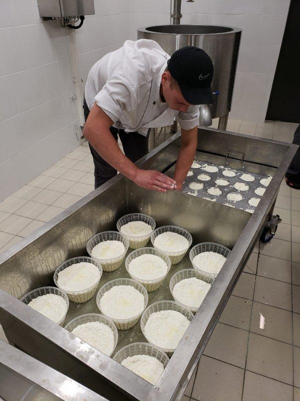 Buy Cheese-making machinery