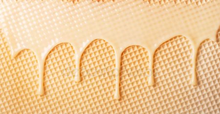 Buy Clean wafer sheet 280x280 TM GOLPEK