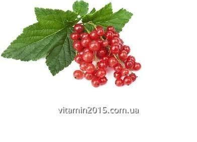 Концентрированный сок красной смородины (65--67Вх)