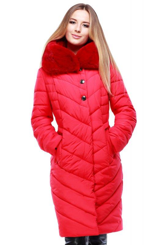 Buy Short coat Maria, 25682