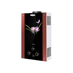 Купити Газова колонка Dion JSD 10 скло з дисплеєм димохідна лілія