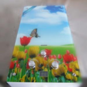 Газовая колонка Dion JSD 10 стекло с дисплеем дымоходная тюльпаны