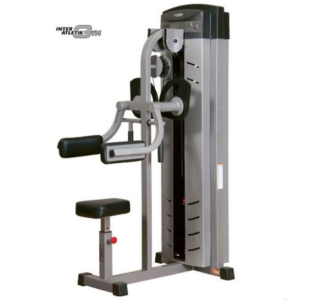 Buy Exercise machine, Delta car, InterAtletikGym, BT113, equipment for gyms, cargo block exercise machines