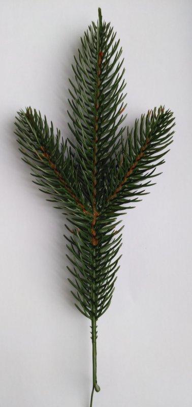 Купить Искусственная ветка ели Элит - 3 Зелёная