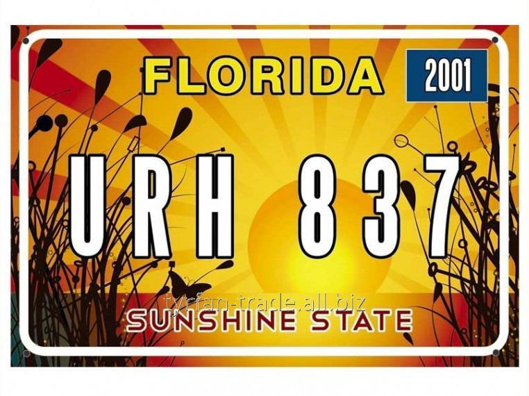 Купить Американский декоративный номер Флорида (Изготовим за 1 час)