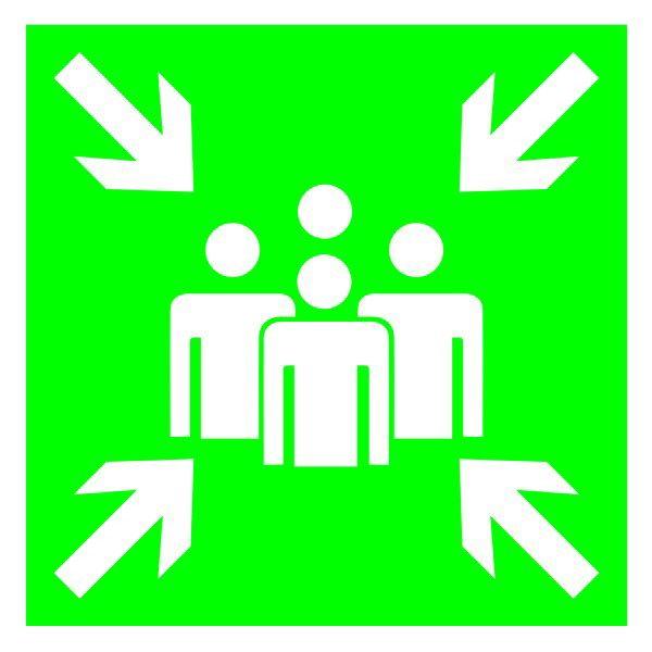 Купить Знак Пункт (место) сбора 300х150 пластик ПВХ
