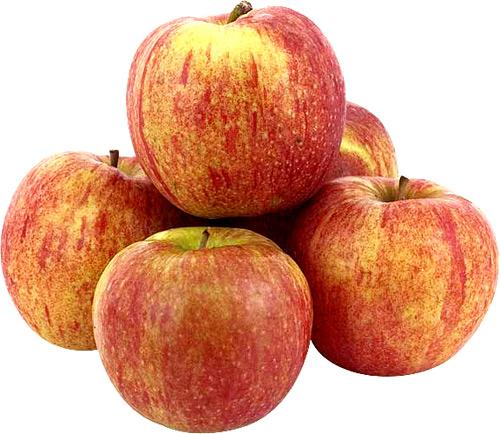 В Польше растет оптовая цена на яблоко Джонаголд