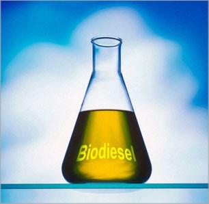 Buy Biodiesel