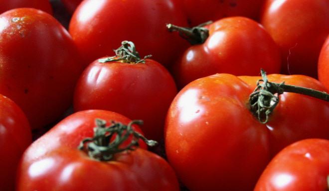 Купить Помидоры, томаты свежие, Выращивание и продажа плодоовощных культур: морковь, помидоры, кабачки и проч. Также, саженцы яблонь.