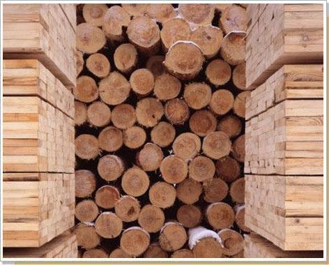 должно сколько древесины продает россия в годы внешний слой