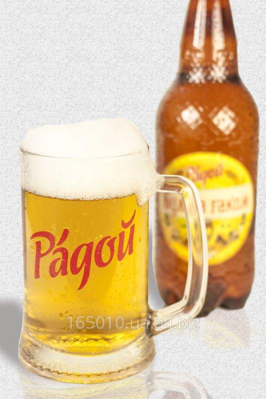 Купить Полутемное пиво ТМ РАДОЙ «МАРГАРИТА»