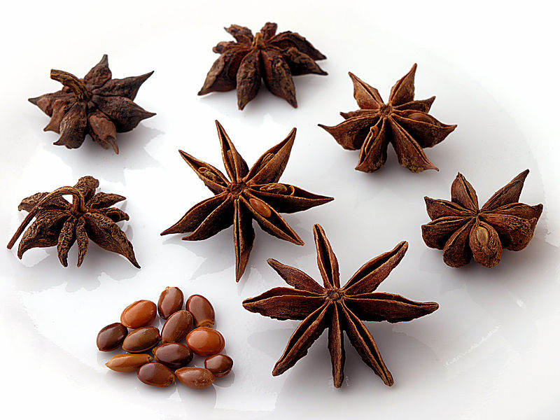 Anisetree, star-shaped Ania