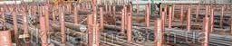Круг 150 мм сталь ХВГ