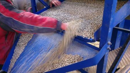 Купить Готовый завод на 1 т/час пеллет - уже ГОТОВЫЙ к отгрузке