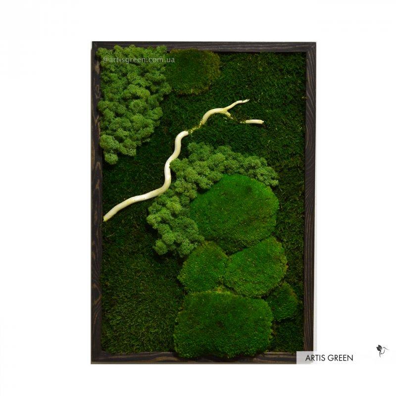 """Купить Картина из стабилизированного мха и растений """"Forest colors"""" 4, P28"""