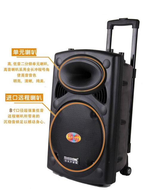 Купить Аккумуляторная колонка Temeisheng 131 F