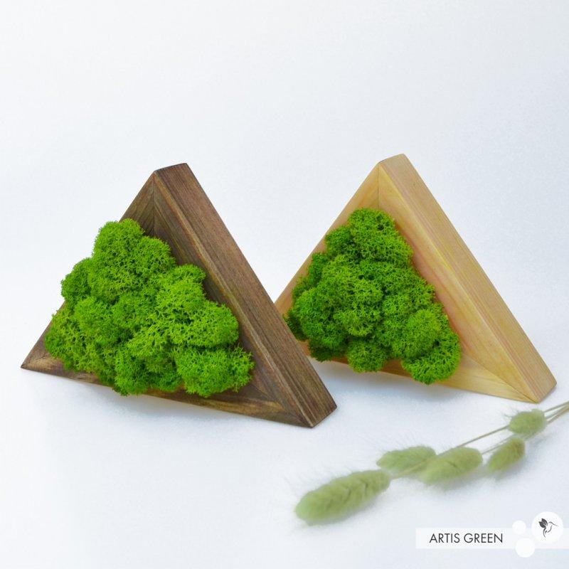 Купить Деревянные треугольник со скандинавским мхом