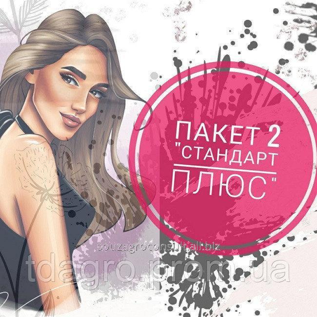 """Купить ПАКЕТ 2 """"СТАНДАРТ ПЛЮС"""""""