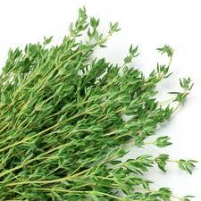 Купить Тимьян ( Чабрец / Тмин ) свежий из Израиля ( зелень оптом )