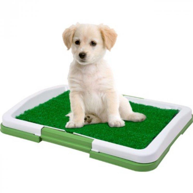 Купить Туалет для собак Pad For Dog 872