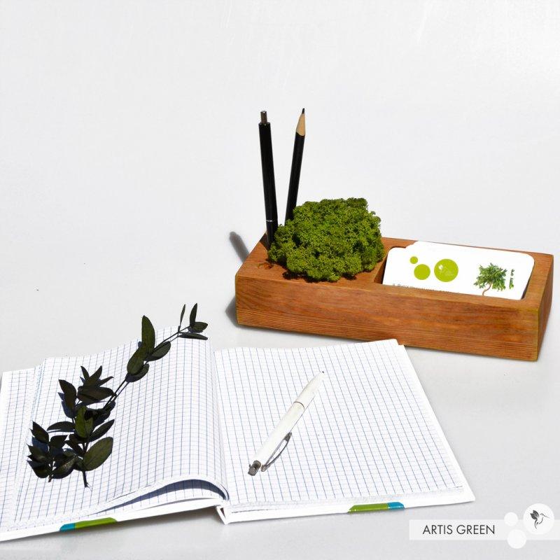 Купить Органайзер для канцелярии 2.0 со стабилизированным мхом, зелёный