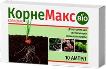 Buy KorneMax - paste for plant fertilization