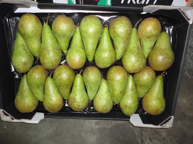 Экономия по-молдавски: руководитель муниципального управления покупает груши и яблоки в Нидерландах