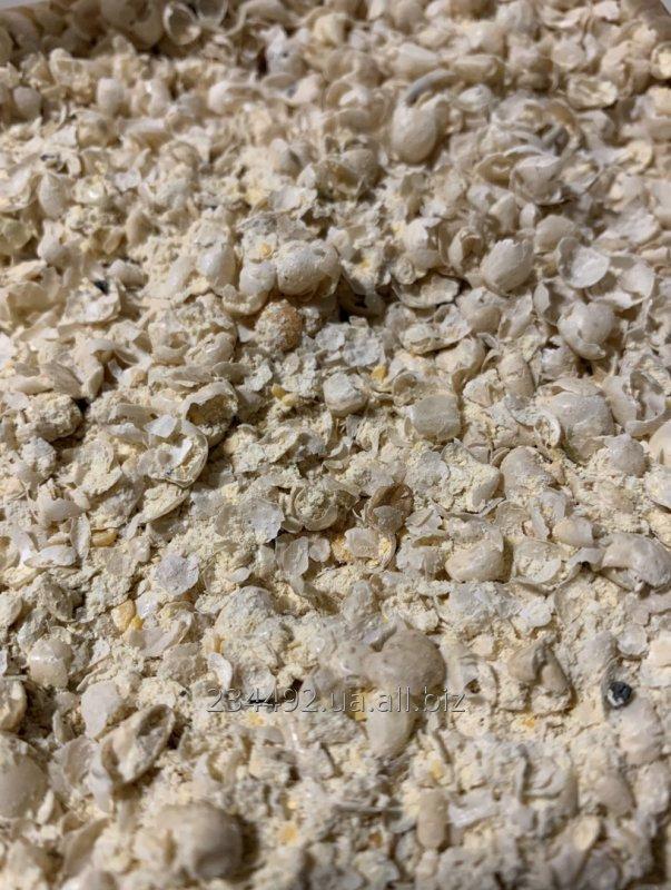 Buy Pea flour
