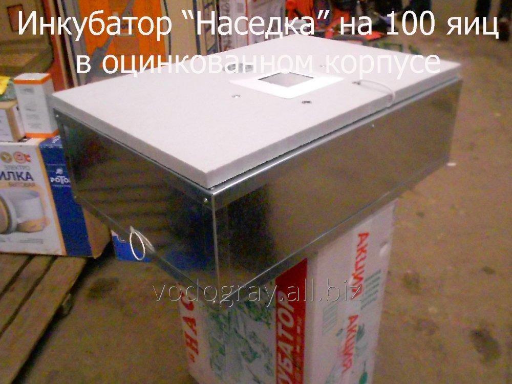 Инкубатор для яиц бытовой на