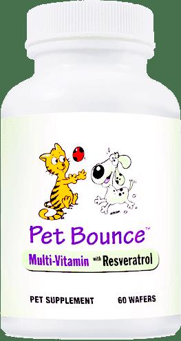 Pet Bounce (Пэт Боунс)- капсулы для собак и котов