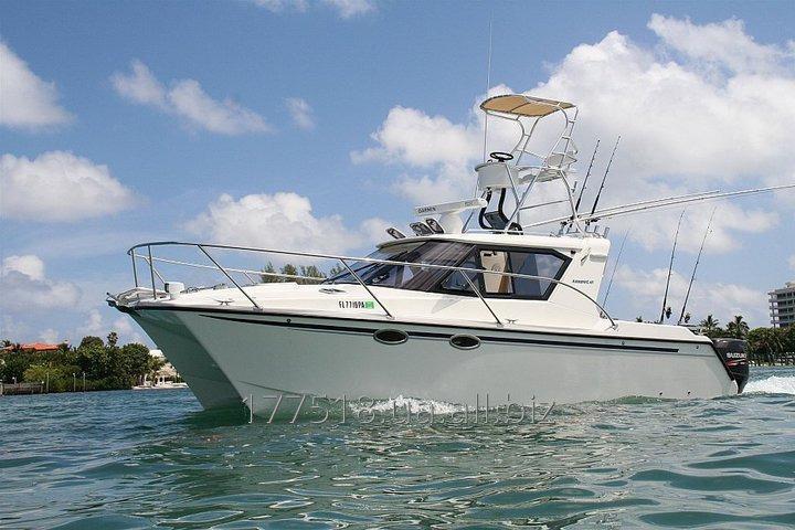 Buy ArrowCat Mini-yacht 30,2015 years