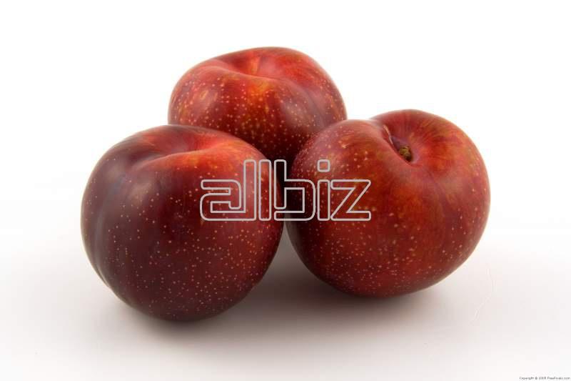 Купить Косточковые фрукты